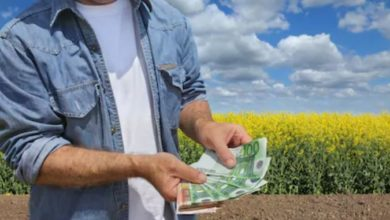 Photo of Apel APIA: Depune online cererea, nu rata subvenția!