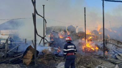Photo of Incendiu la o fermă din Jurilovca stins după 15 ore!